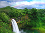 Valley Waterfall Hawaiian  Adventure